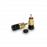 Acoustic Revive IP-2Q   input non-shorting RCA
